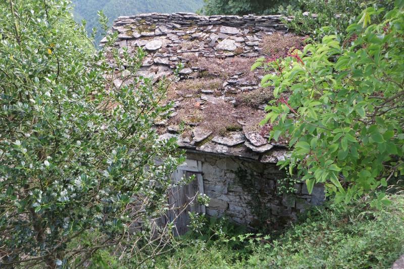 sambuca_castello_ruiny_domu_moja_toskania