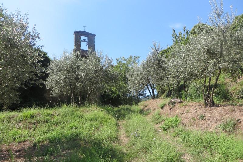 wejscie_do_Calbi_od_strony_gaju_oliwnego_moja_Toskania