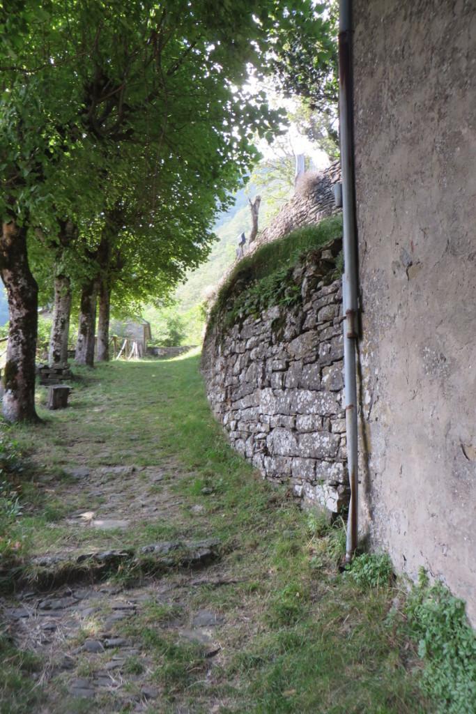wejscie_do_ruin_sambuca_castello_moja_Toskania