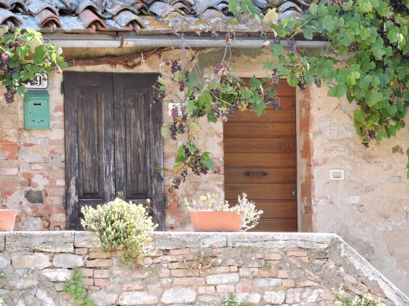 winogrona_drzwi_rocca_d_orcia_moja_Toskania