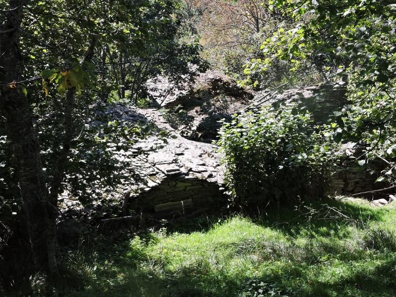 domy_w_lesie_formentara_moja_toskania