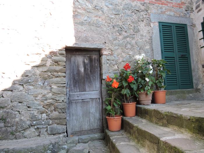 kwiaty_w_donicach_moja_toskania_pontito