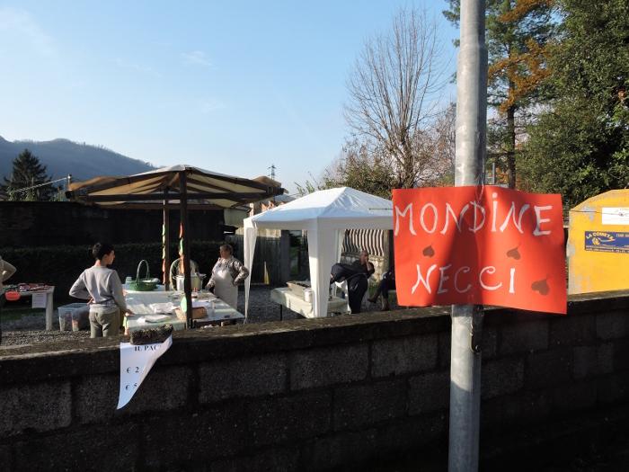 napis_mondine_necci_chifenti_moja_toskania