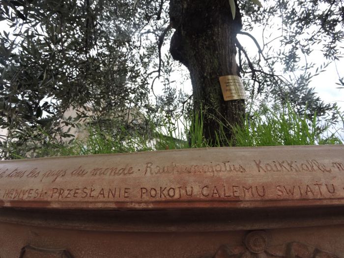 napis_po_polsku_na_terakocie_w_imprunecie_moja_toskania