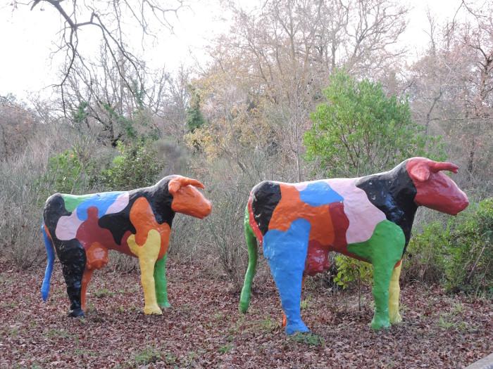 Krowy przed galeria