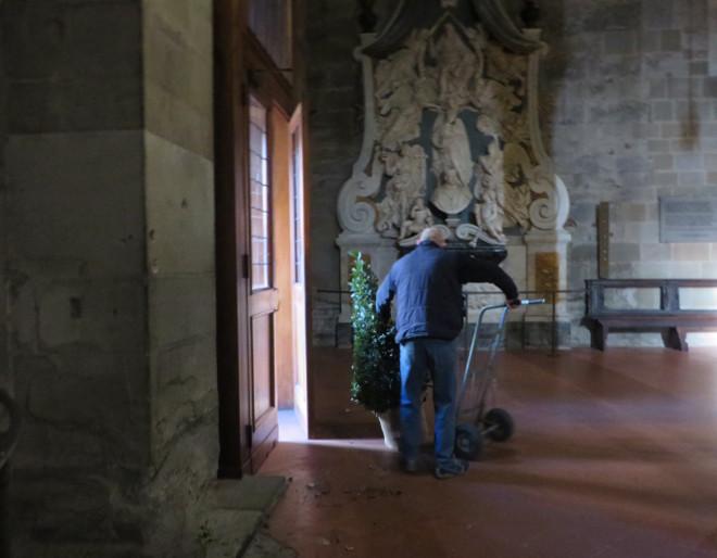 wywozenie_drzewek_z_katedry_pistoia_moja_Toskania