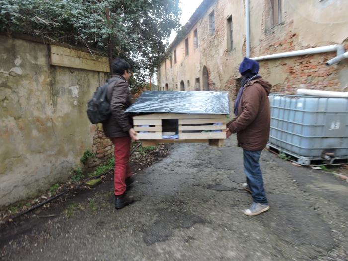 zaniesienie_domu_dla_kotow_w_toiano_moja_Toskania