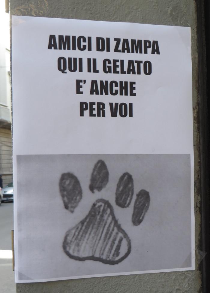 informacja_o_lodach_dla_zwierzat_moja_toskania