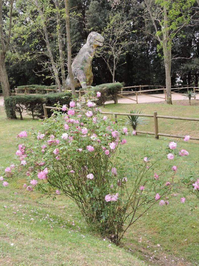 kwiaty_dinozaur_park_prehistoryczny_moja_toskania_peccioli
