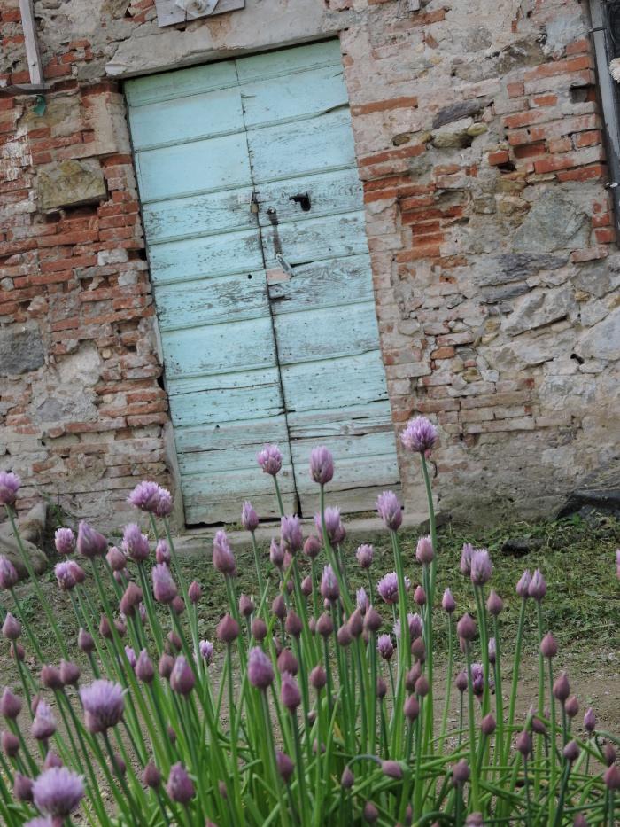 niebieskie_drzwi_moja_Toskania