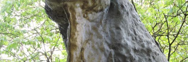 Park prehistoryczny w Peccioli