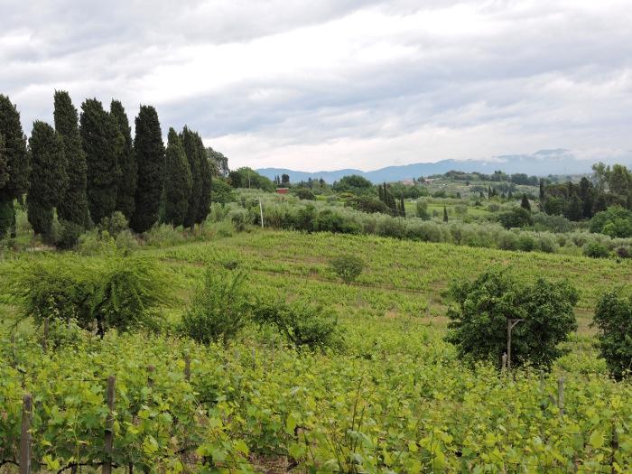 toskanski_widok_moja_Toskania