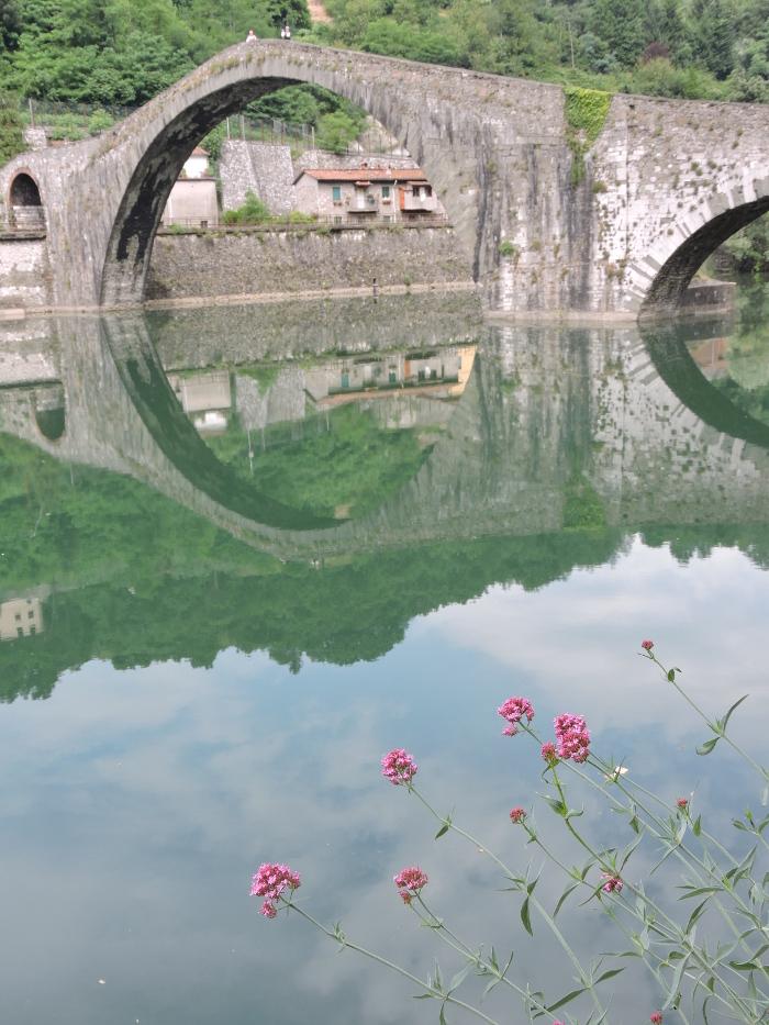 kwiaty_rozowe_most_diabla_moja_toskania