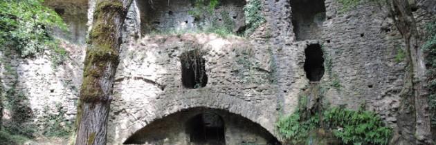 Mulinaccio di Scandicci – leśne odkrycia