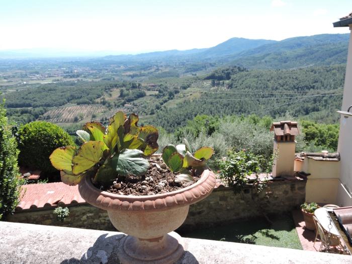 widok_z_vinacciano_moja_toskania