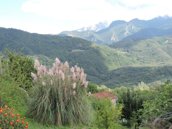 panorama_pulica_moja_toskania