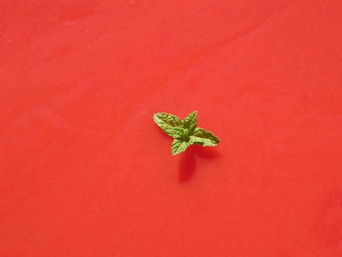 przyblizenie_ciasta_abruzowego_moja_toskania