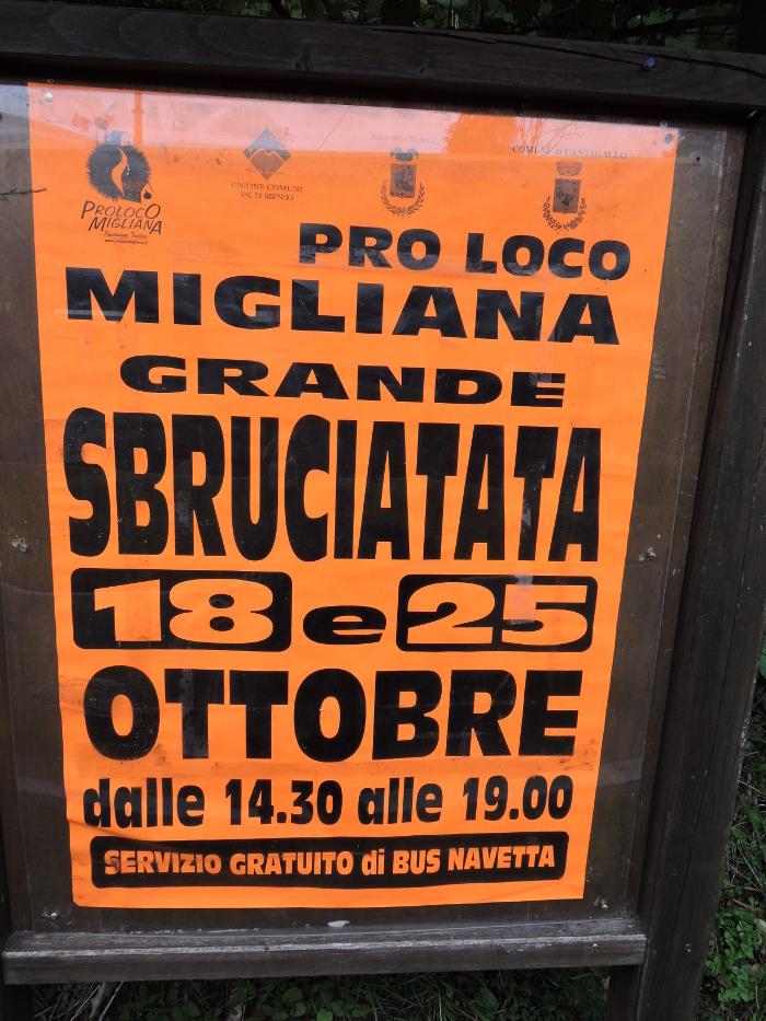 plakat_swieto_kasztana_migliana_moja_toskania