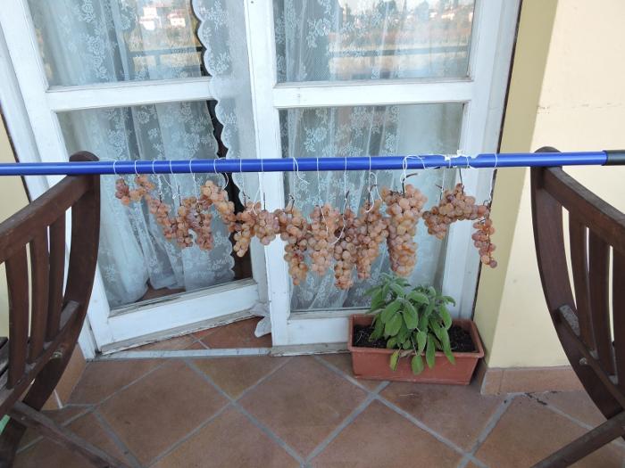 kij_od_szczotki_z_powieszonymi_winogronami_moja_Toskania