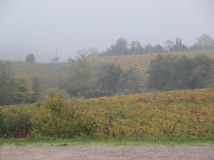 poranek_jesienny_w_toskanii_moja_toskania