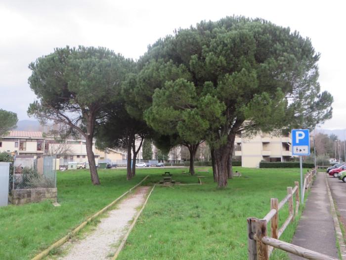 Przed szkola Julci