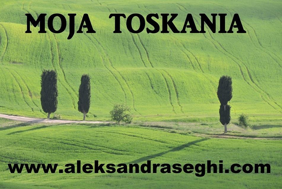 logo_moja_toskania_zielone