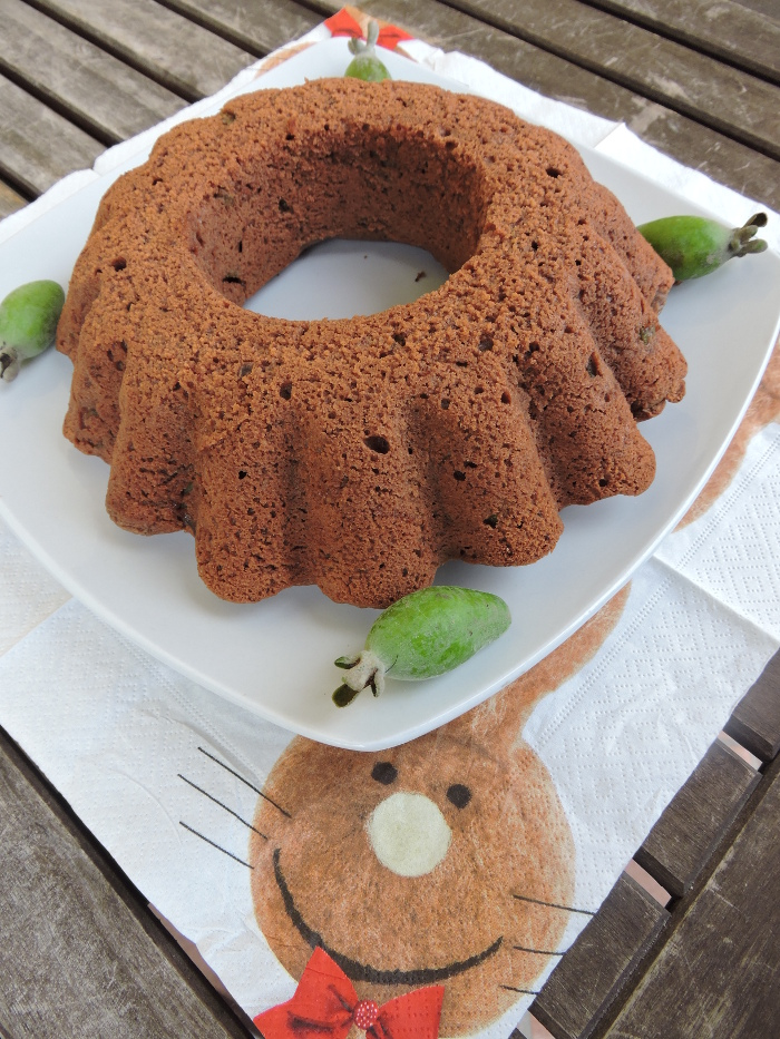 ciasto_czekoladowe_z_akka_sellowa_moja_toskania