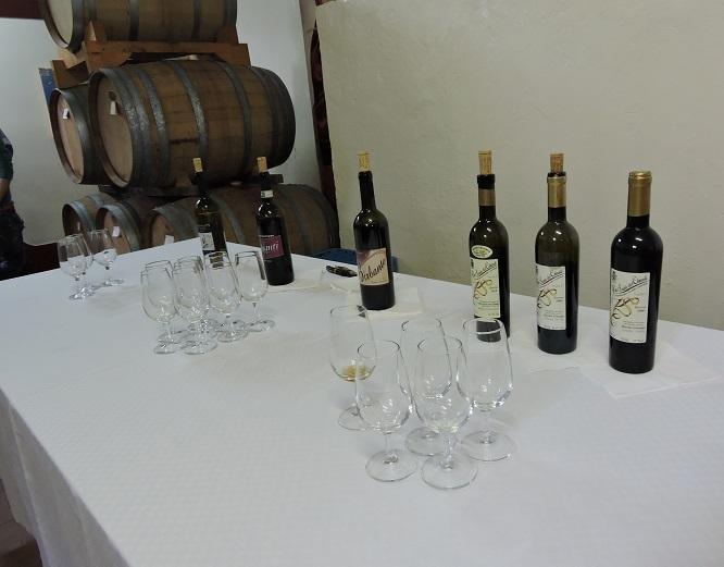 degustacja_wina_moja_toskania