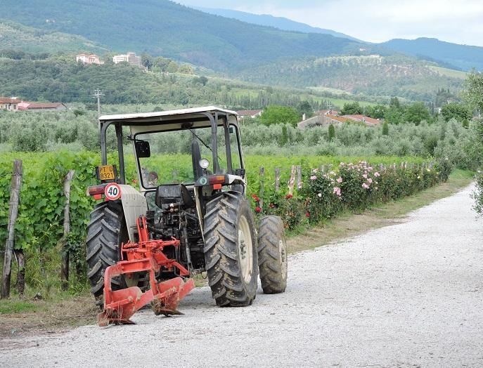 traktor_i_winnice_moja_toskania