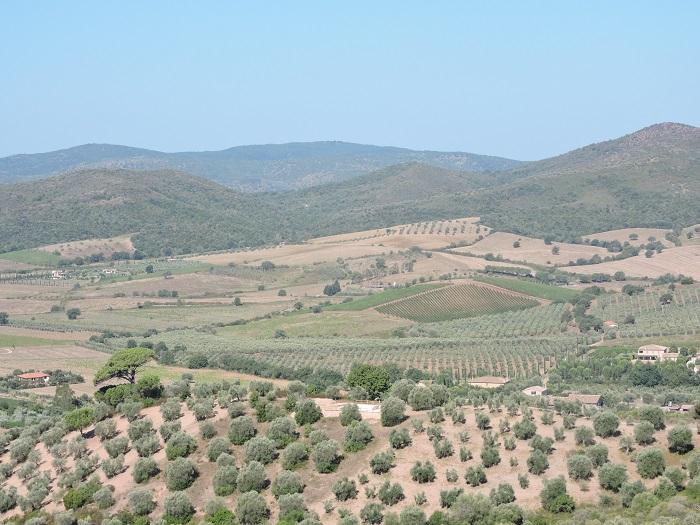 panorama_z_capalbio_moja_toskania