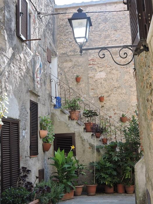 uliczka_z_kwiatami_w_capalbio_moja_toskania
