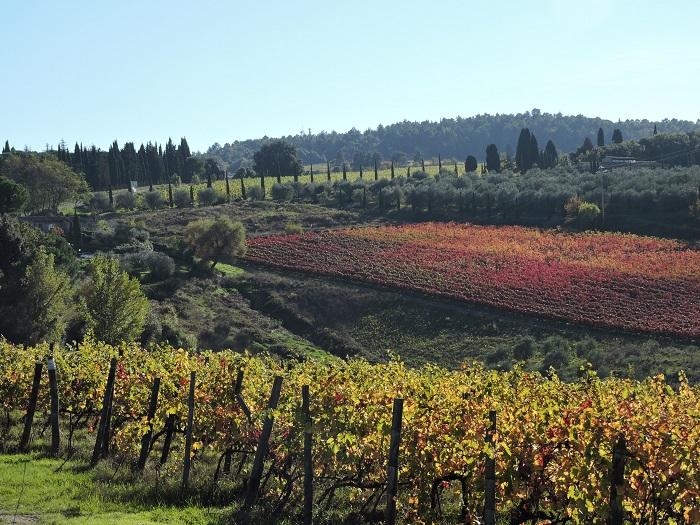 jesienna_toskania_moja
