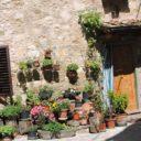 Montefioralle: perełka Chianti