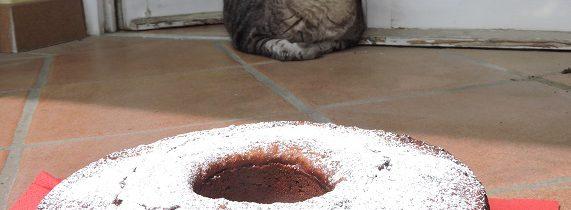 Ciasto ricottowo – migdałowe z czekoladowymi łezkami